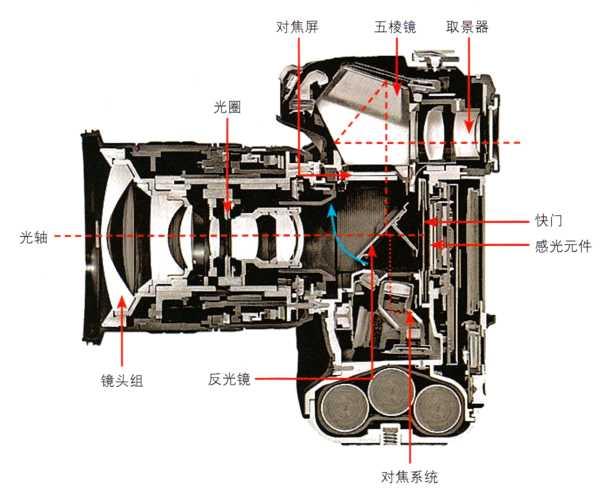 相机剖面图中,了解到其成像的过程.-数码单反相机的成像原理